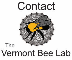 Visit the Vermont Bee lab