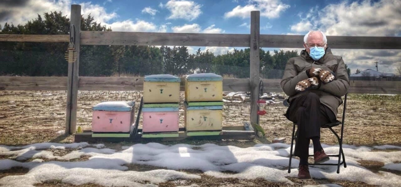 Join the Vermont Beekeepers Association
